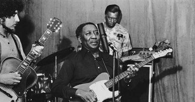 Dinastías bluesistas
